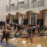 Ashtanga Yoga: Online—Spring 2020
