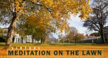 Virtual Meditation on the Lawn: A New Series