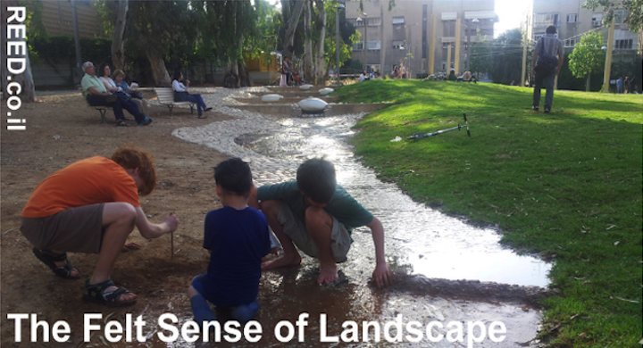 The Felt Sense of Landscape as Antidote to 'the Extinction of Experience': Designing an urban park in Tel Aviv